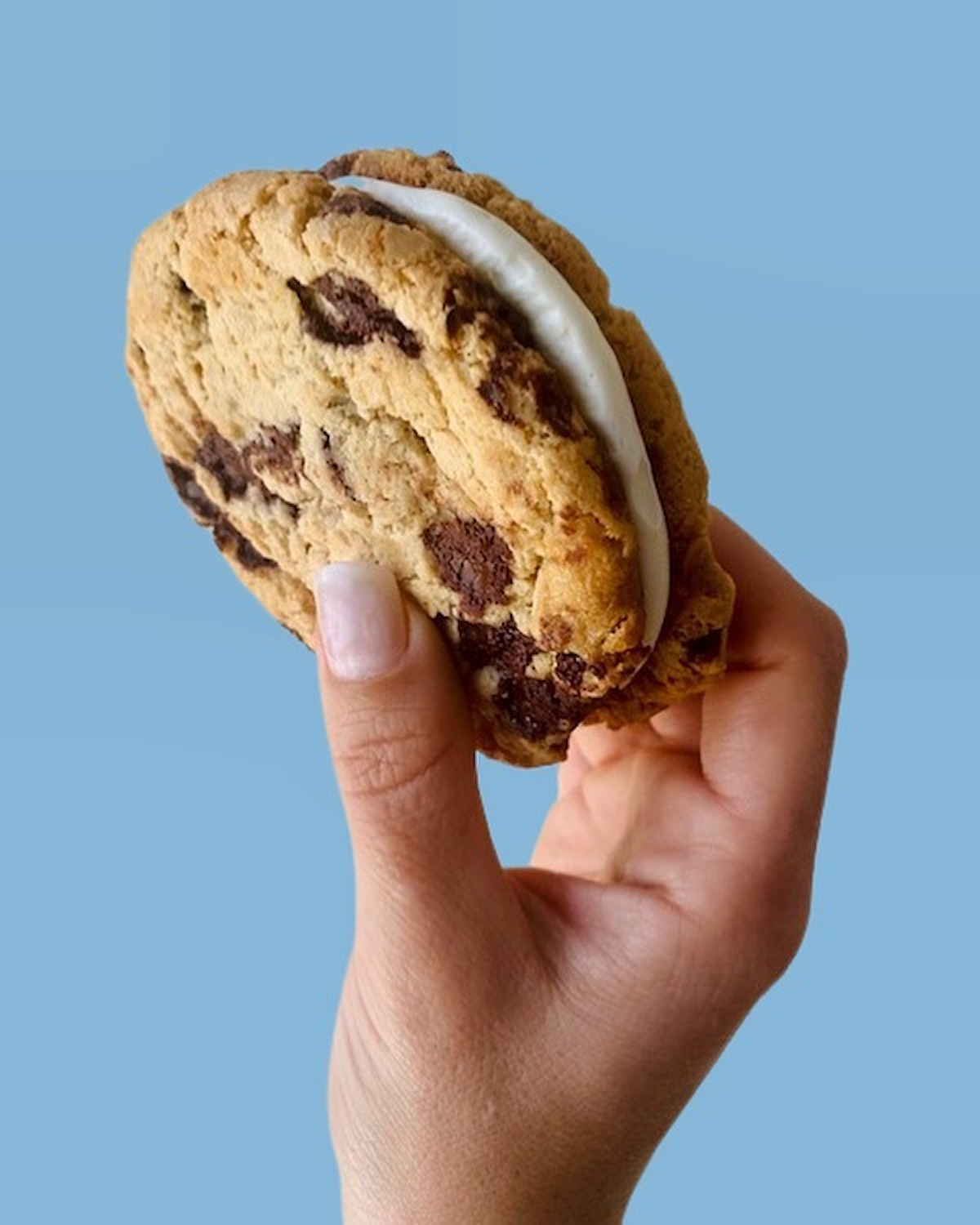You're A Cookie! Gets a Storefront